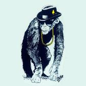 Chimps47